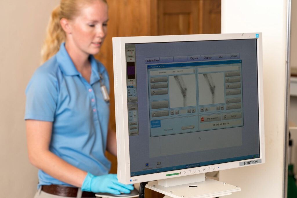 Veterinary technician reading nuclear scintigraphy (bone scan) at Palm Beach Equine Clinic.