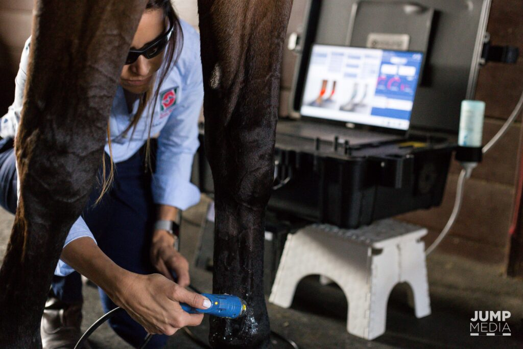 Palm Beach Equine Clinic's Dr. Natalia Novoa goes far beyond standard treatment by utilizing Regenerative Laser Therapy.